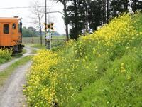 津軽鉄道撮影 1日目 - お寺や神社、古い町並み、鉄道、他色々の写真ブログ