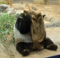 食べすぎ注意 - 動物園のど!