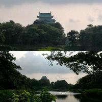 3年ぶり台湾ひとり旅 7 - travel dream world