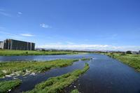 夏の立川を拾ってきました - 立川は Ecoutezbien  えくてびあん