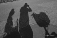 週末の日課 - BobのCamera
