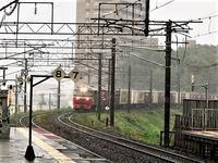 藤田八束の鉄道写真@北海道で貨物列車写真を撮りました・・・あいにくの雨、雨の中の発見 - 藤田八束の日記
