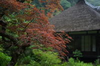 6.23 浄智寺 - 週末はソニーα6500でぶらり鎌倉・湘南散歩!