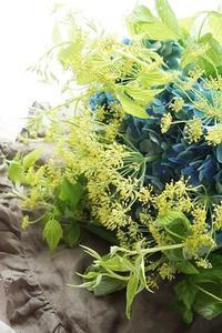 紫陽花と茴香で夏の花束 - お花に囲まれて