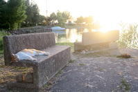 金色の湖畔の爆睡猫・子猫 独り夕焼け愛でる猫 - イタリア写真草子 Fotoblog da Perugia