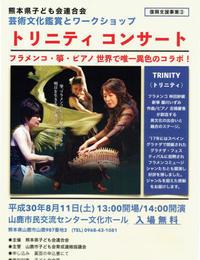 TRINITY トリニティの夏 - 藤川いずみのKOTOトコトコ演奏旅行記