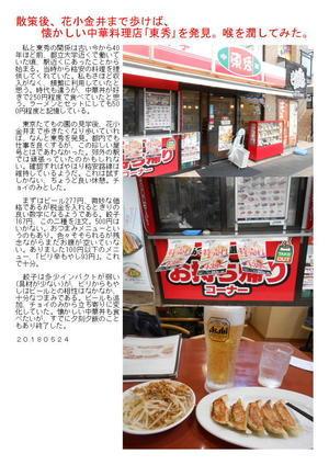 散策後、花小金井まで歩けば、懐かしい中華料理店「東秀」を発見。喉を潤してみた。