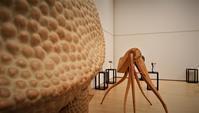 河野 甲 革立体の世界 - アートで輪を繋ぐ美空間Saga