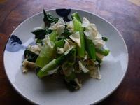 青菜と乾燥湯葉のお浸し - LEAFLabo