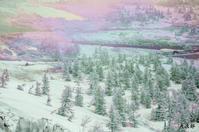 雪景色 - THANKS