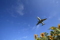 ひまわりをこえて~2008年旭川空港~ - 自由な空と雲と気まぐれと ~from 旭川空港~