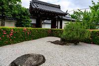 サツキ咲く慈雲院(妙心寺塔頭) - 花景色-K.W.C. PhotoBlog