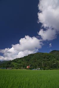 日本の正しい田園風景 - Change The World