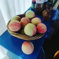 嬉しい桃の季節 - 自家製酵母で楽しむ暮らし uipain ユイパン