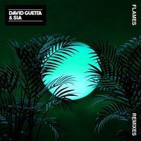 David Guetta and Sia Flames Exended/Remixies - inthecube