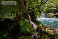 菊池渓谷-黎明の滝 - Mark.M.Watanabeの熊本撮影紀行