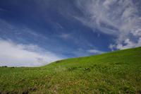 広々とした風景を求めて(3)「散策」 - 空 -Sora-