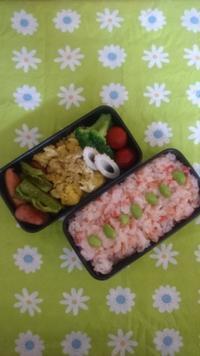 今日のお弁当 - trintrin☆dolce☆