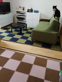 いい感じ2×2 - 素人木工雑貨と犬猫日記