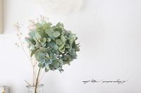 【紫陽花ドライの作り方】自宅庭からシャビーシックな紫陽花ドライができました♪ - neige+ 手作りのある暮らし