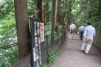 ■吹割の滝18.7.4 - 舞岡公園の自然2