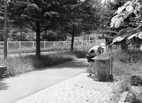 水分補給のランナーと歌丸の火炎太鼓 - 照片画廊