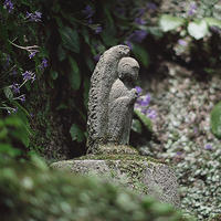 鎌倉紫陽花散歩東慶寺花とは縁が切れません18.06.05 11:06 - スナップ寅さんの「日々是口実」