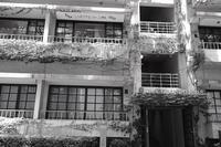 青山アパートメント - summicron
