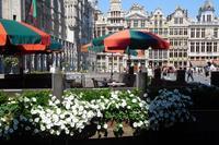 ブリュッセル市内観光 - 流木民