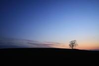 暮れなずむ~美瑛~ - 自由な空と雲と気まぐれと ~from 旭川空港~