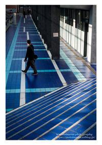 青い回廊 - ♉ mototaurus photography
