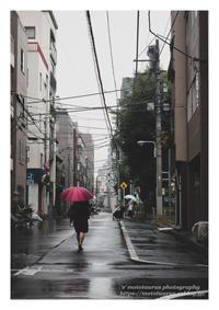 赤い傘 - ♉ mototaurus photography