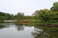 昭和記念公園散策♪日本庭園のハナショウブ 3 - Let's Enjoy Everyday!