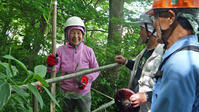 まちむら交流きこうの里山林整備交付金の採択内定6・14 - 北鎌倉湧水ネットワーク