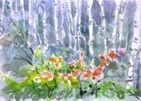 白樺林 - ryuuの手習い