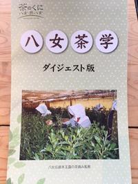 【夏休み親子お茶教室を開催します】 - ブログ版 八女福島町並み通信
