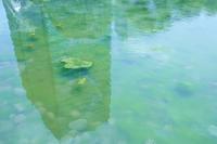旧芝離宮恩賜庭園 - 写真を想う日日