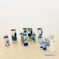 夏のハーバリウムづくり♪ワークショップ - Bleu Belle Fleur☆ブルーベルフルール