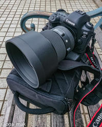 "SIGMA 105mm F1.4 DG HSM | Art ""BOKEH-MASTER"" 試し撮り - OGA☆写"