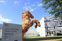 【十和田市現代美術館】青森旅行 - 14 - - うろ子とカメラ。