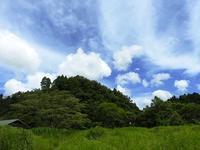 晴れ渡る青空 - 千葉県いすみ環境と文化のさとセンター