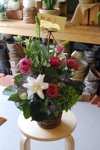 アレンジメント御祝やお供え。ご用途に合わせてお作りします。 - 花と暮らす店 木花 Mocca