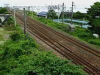 新潟そぞろ歩き:街道歩き・北陸道を歩く(その3) - 日本庭園的生活