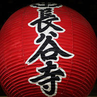 鎌倉紫陽花散歩長谷寺の紫陽花18.06.05 15:45 - スナップ寅さんの「日々是口実」