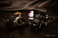 今日のカメラ - BobのCamera