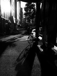 伸びる影 - 節操のない写真館