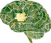 脳はとても面倒くさがり~効率を求める脳の特性~ - 身体内圧の理論