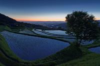 輝く棚田 - katsuのヘタッピ風景