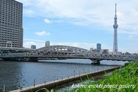 「夏空と隅田川とスカイツリー」 - こころ絵日記 Vol.1
