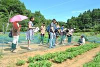 Gracias(グラシアス)! - 千葉県いすみ環境と文化のさとセンター